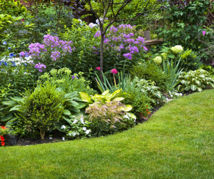 bigstock-Lush-landscaped-garden-with-fl-62068106