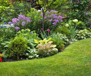 bigstock-Lush-landscaped-garden-with-fl-62068106
